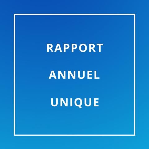 rapport annuel unique